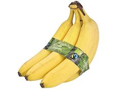 Nu ook biologische Fairtrade bananen bij PLUS