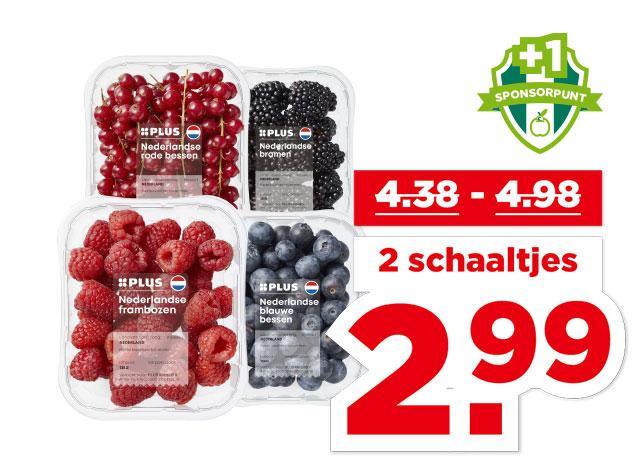 PLUS Nederlands Zacht fruit   Bekijk aanbieding